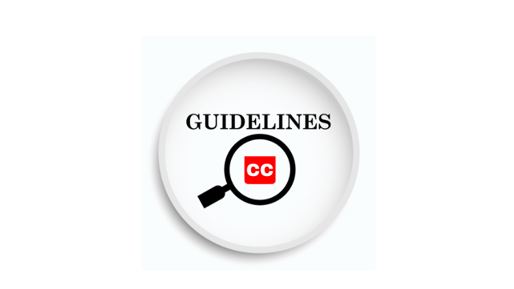Closed Captioning Guidelines